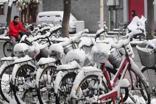 Снежная стихия разбушевалась по всему миру. Гибнут люди