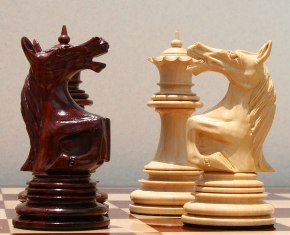 Закарпатский гроссмейстер лидирует в шахматном чемпионате Европы