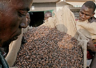 Привет из Африки: цены на шоколад бьют рекорды