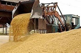 Правительству предлагают отменить таможенный сбор на экспорт зерновых