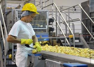 Аграрный сектор в России не выживет до конца года?