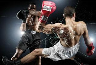 Перчатки для профессионального бокса