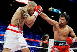 Занятие боксом: цена вопроса