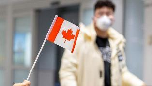 В Канаде придумали, как к одному аппарату ИВЛ подключить 9 пациентов