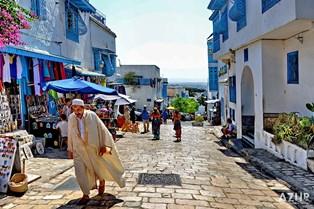 Власти Туниса намерены развивать в стране винные туры