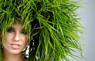 Восстановление волос после зимы: обзор лучшие профессиональные кондиционеры