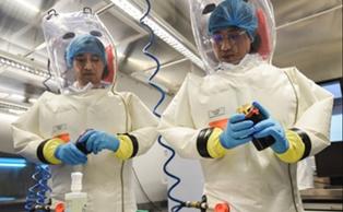 Эпидемия коронавируса началась в научной лаборатории Уханя