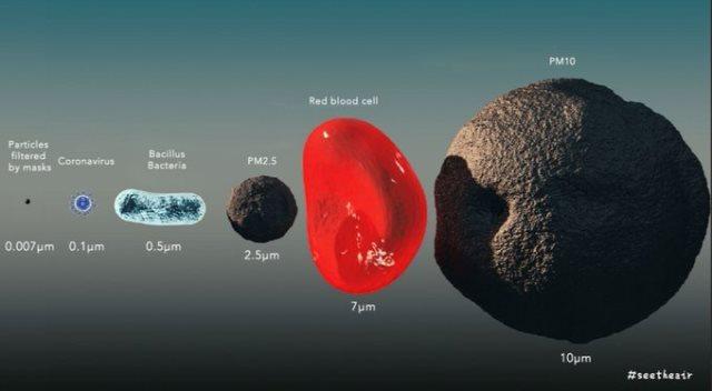 Маска при коронавирусе: насколько эффективна защита?