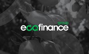 Инвестиции в «Экофинанс» для физических лиц: как получить высокий доход при ...