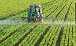 Украина игнорирует проблему вызывающего рак сельскохозяйственного гербицида