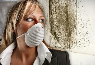 Грибок в ванной: опасный паразит в вашем доме
