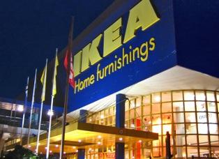 IKEA планирует увеличить закупку древесины в России для производства мебели