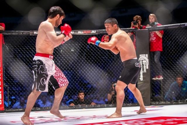 Занятия MMA: с чего начать?