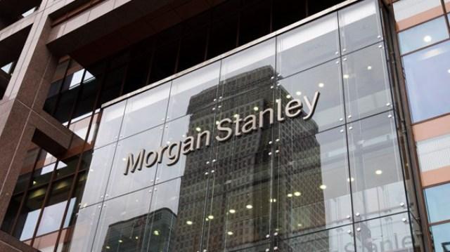 Morgan Stanley: украинская гривна упадет до 31 грн/дол