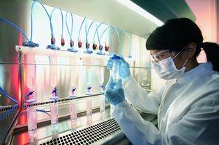 Тихая революция в онкологии: новость, которую не заметил мир