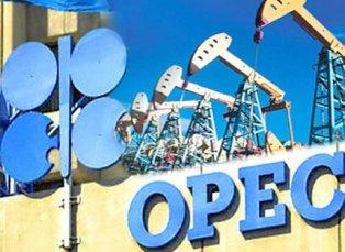 ОПЕК: падение цен на нефть достигло дна