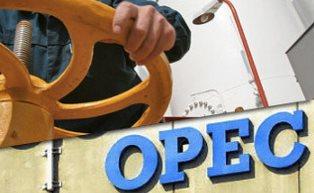 Нефть снова упала в цене на фоне сомнений по договоренностям стран ОПЕК