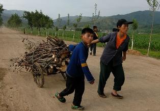 В КНДР уменьшили дневную норму пищи - до самого низкого уровня за последние ...