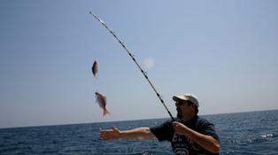 Главный секрет успешной рыбалки: как выбрать прикормку?