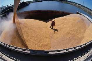 Россия обходит ЕС по объемам экспорта зерна