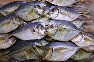 Хранение и упаковка сушеной и вяленой рыбы
